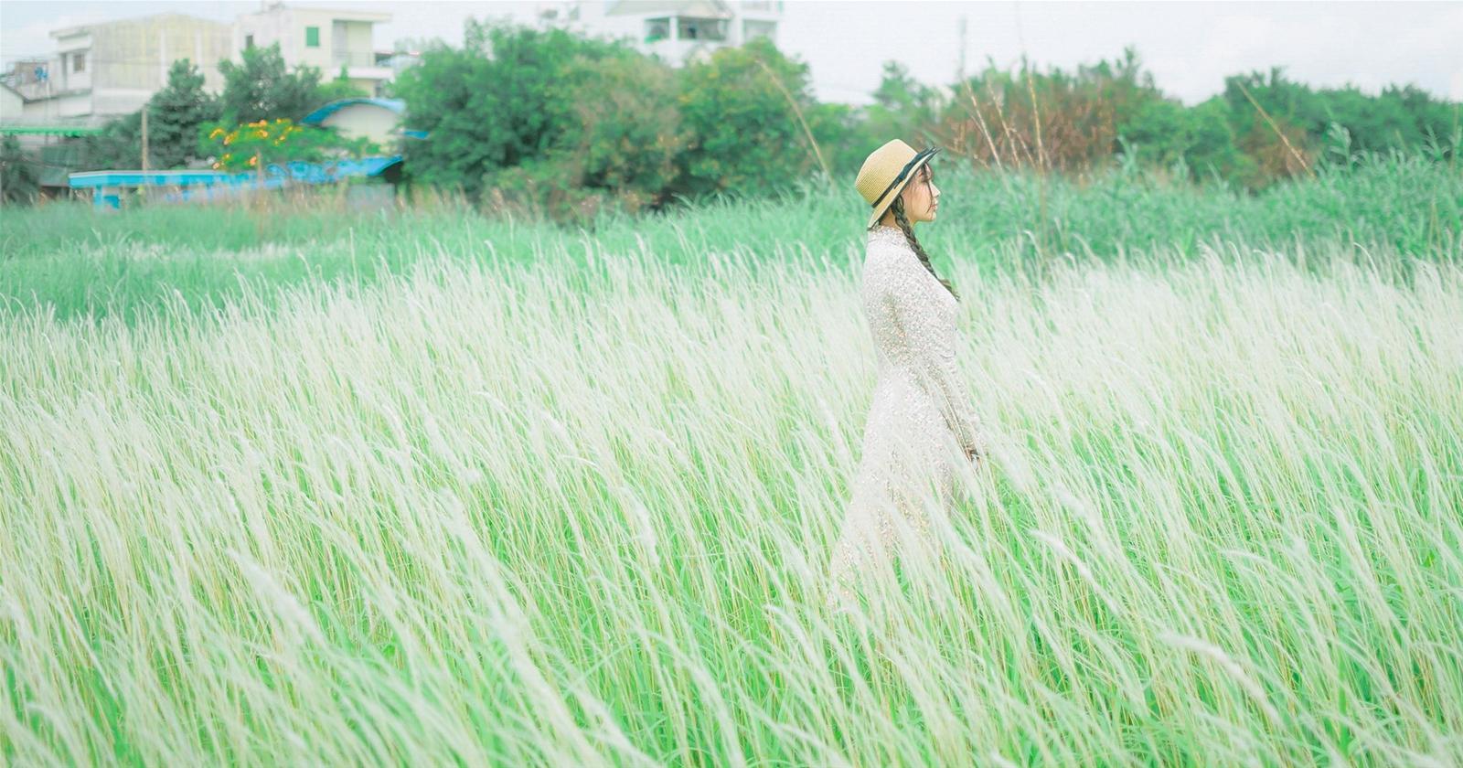 Cánh đồng cỏ lau quận 7 - Địa điểm chụp ảnh ngoại cảnh đẹp ở Sài Gòn