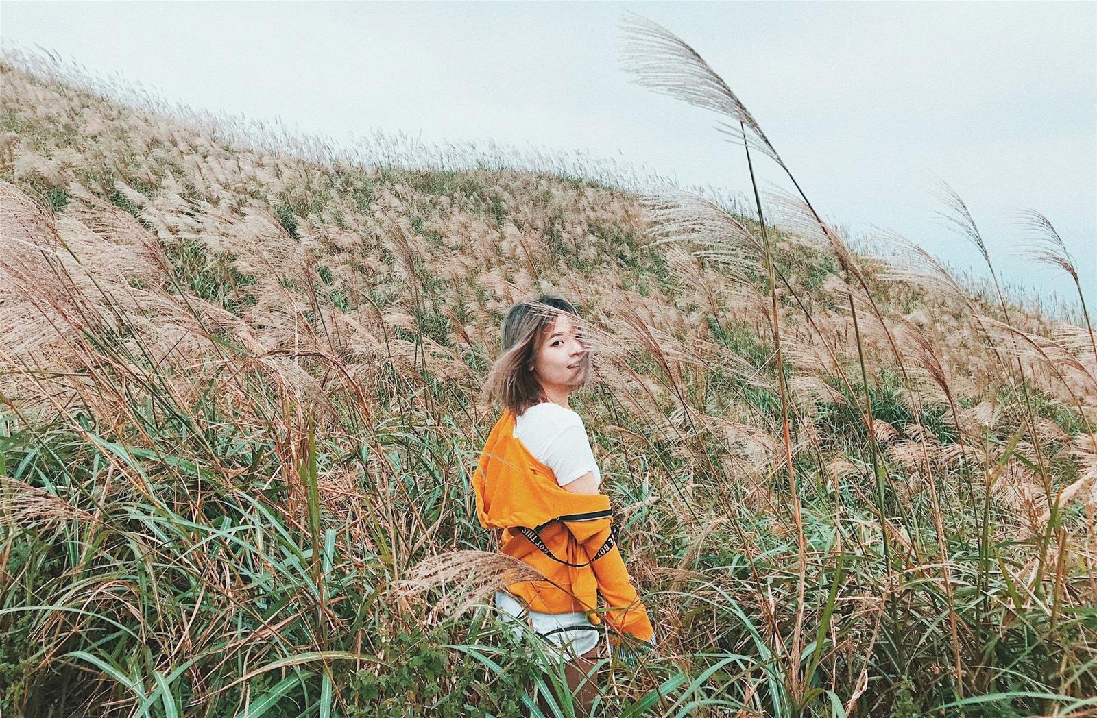 Vô số các bức ảnh đẹp của giới trẻ đã được chụp tại cánh đồng cỏ lau