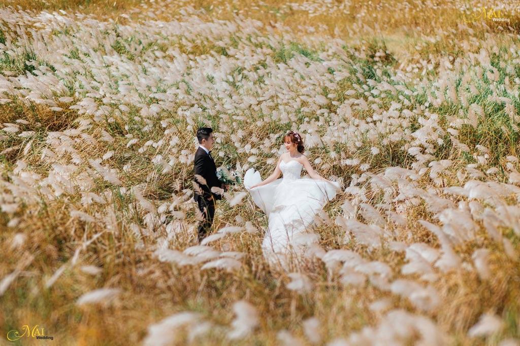 Ảnh cưới siêu lãng mạn tại bãi cỏ cháy Đà Nẵng