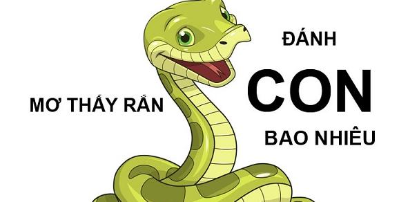 Mơ thấy rắn đánh con bao nhiêu?