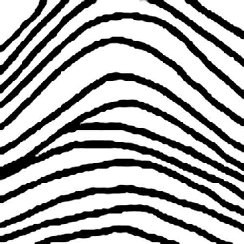 Vân tay hình sóng đơn giản